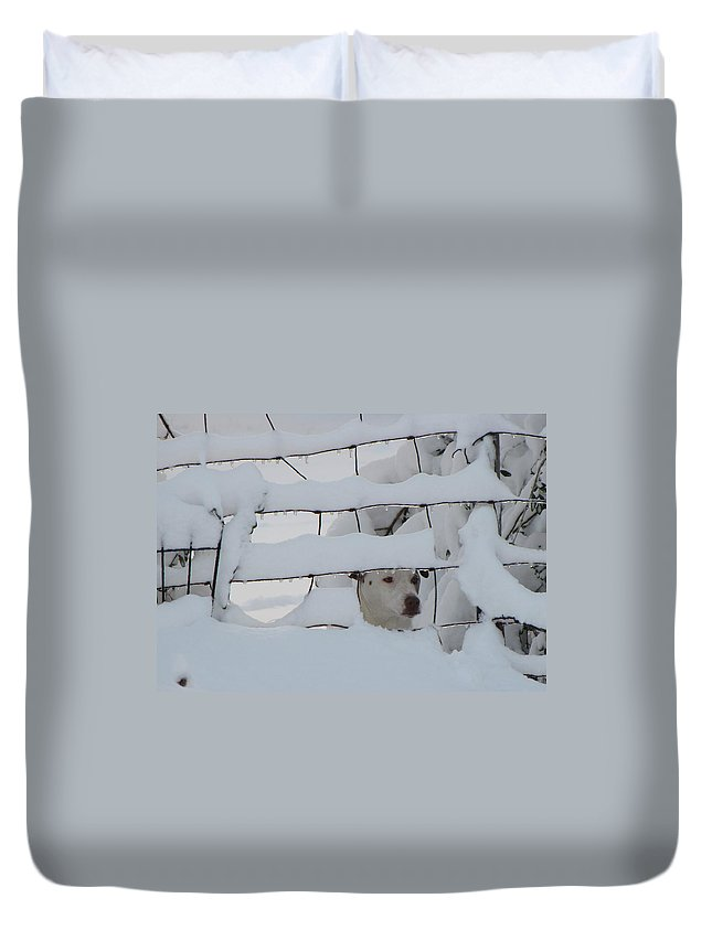 Fence Duvet Cover featuring the photograph Checking On The Neighbors by Karen Beasley