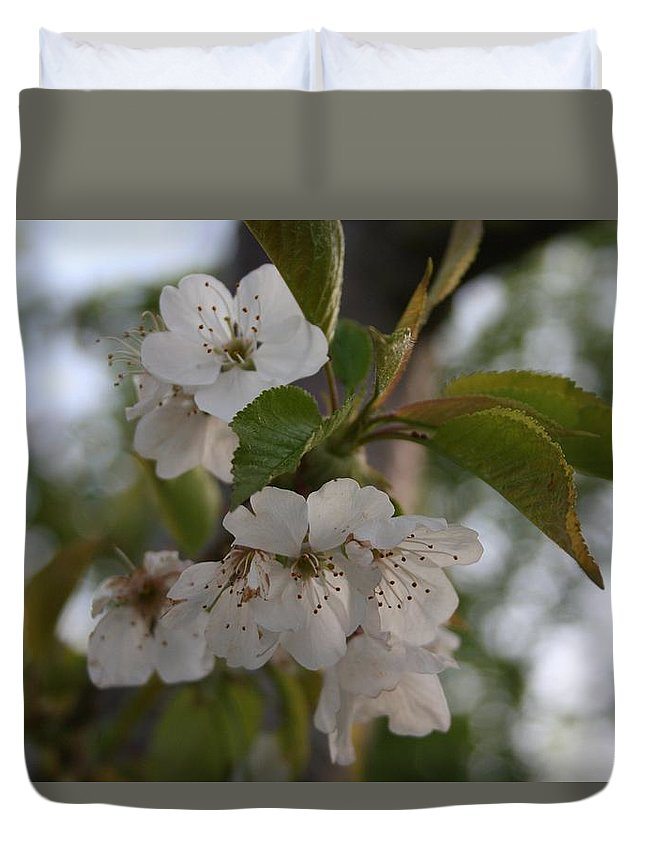 Cherry Blossom Duvet Cover featuring the photograph Cherry Blossom by Tracey Harrington-Simpson