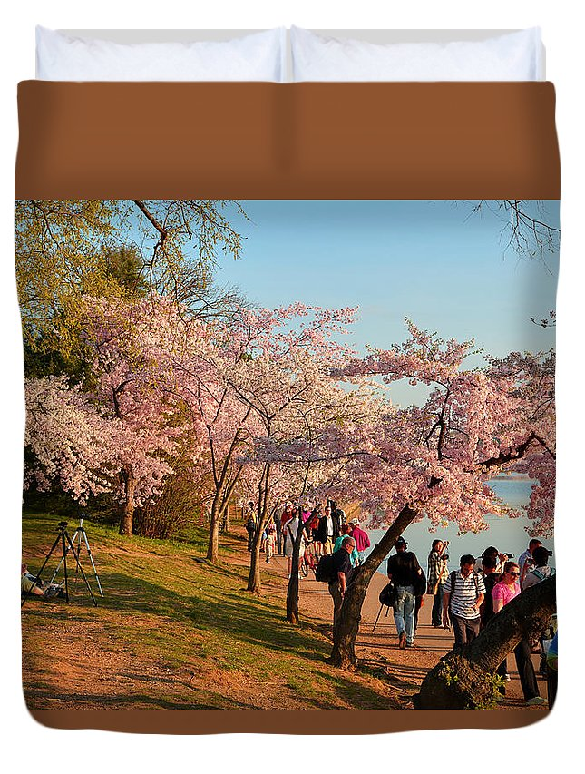 Architectural Duvet Cover featuring the photograph Cherry Blossoms 2013 - 007 by Metro DC Photography
