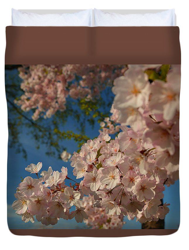 Architectural Duvet Cover featuring the photograph Cherry Blossoms 2013 - 035 by Metro DC Photography