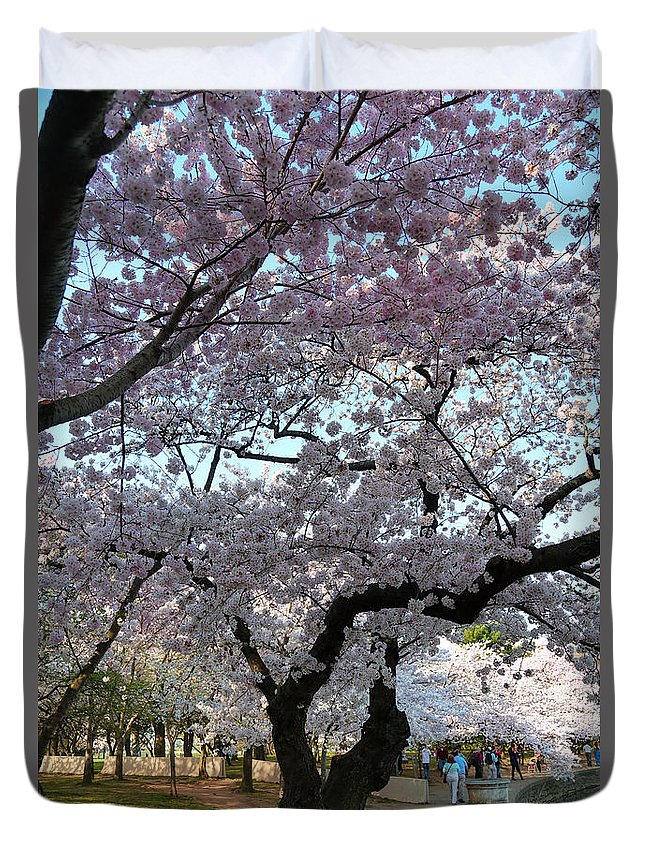 Architectural Duvet Cover featuring the photograph Cherry Blossoms 2013 - 044 by Metro DC Photography