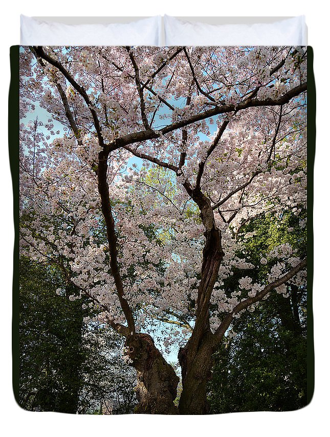 Architectural Duvet Cover featuring the photograph Cherry Blossoms 2013 - 056 by Metro DC Photography