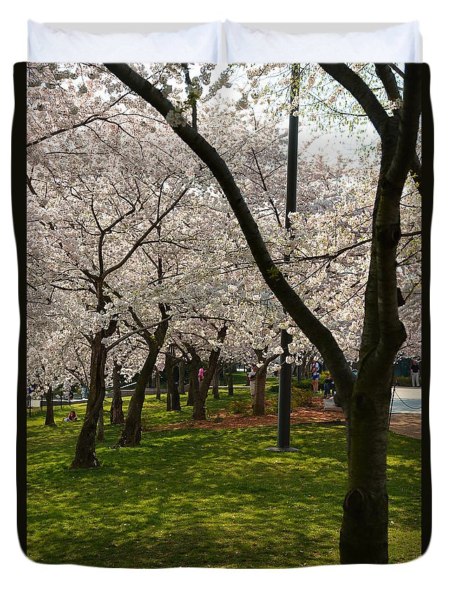 Architectural Duvet Cover featuring the photograph Cherry Blossoms 2013 - 057 by Metro DC Photography