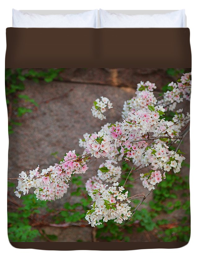 Architectural Duvet Cover featuring the photograph Cherry Blossoms 2013 - 067 by Metro DC Photography