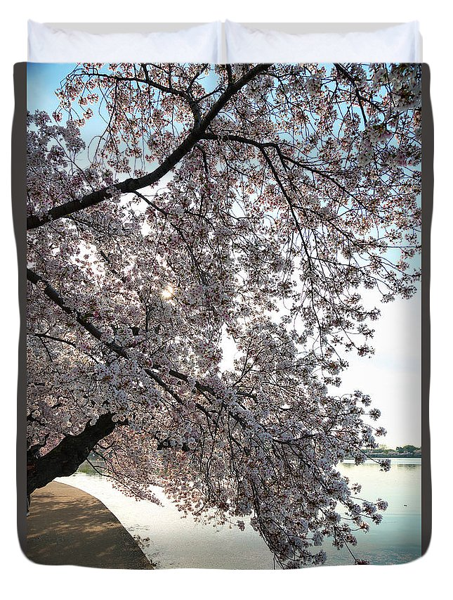 Architectural Duvet Cover featuring the photograph Cherry Blossoms 2013 - 092 by Metro DC Photography