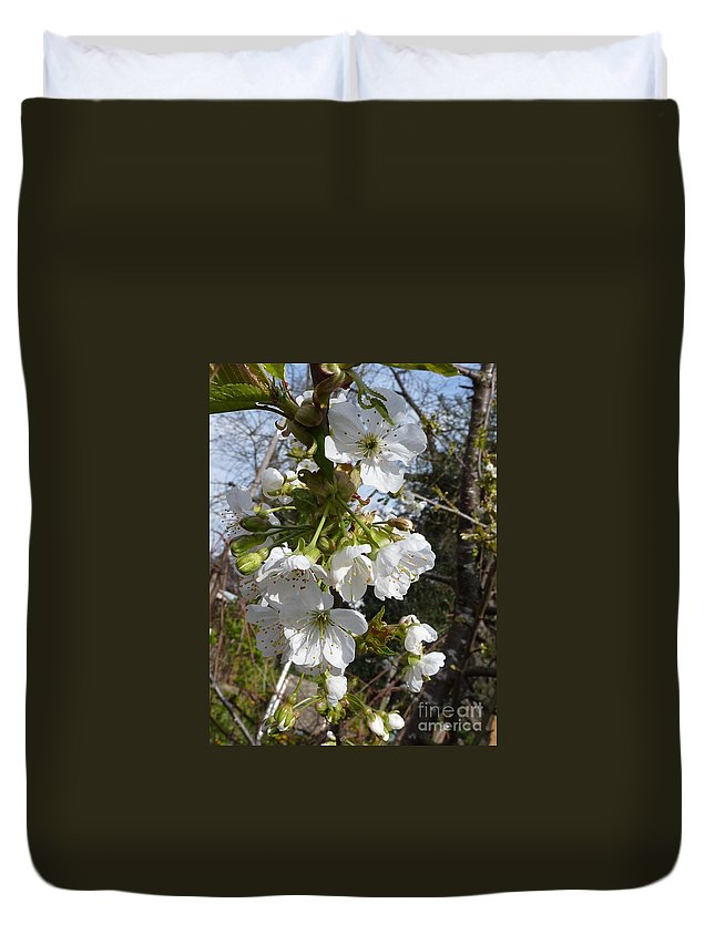Cherry Blossoms Duvet Cover featuring the photograph Cherry Blossoms by Rain Shine