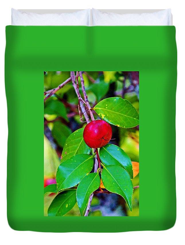 Cherry Duvet Cover featuring the photograph Cherry by Cynthia Guinn