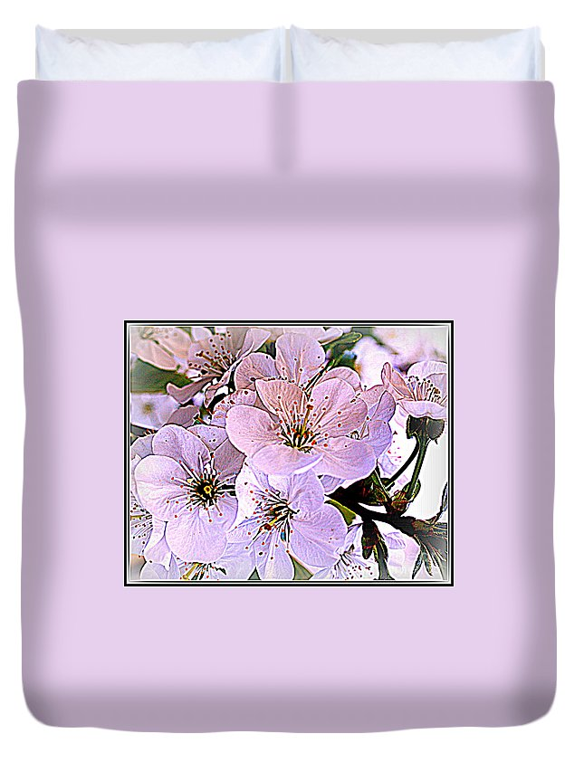Cherry Tree Blossoms - Cherry Trees - Spring - Spring Blossoms - Florals - Flowers - Cherry Tree Flowers - Nature - Landscapes - Pin And White Blossoms- Duvet Cover featuring the photograph Cherry Tree Blossoms by Dora Sofia Caputo Photographic Design and Fine Art