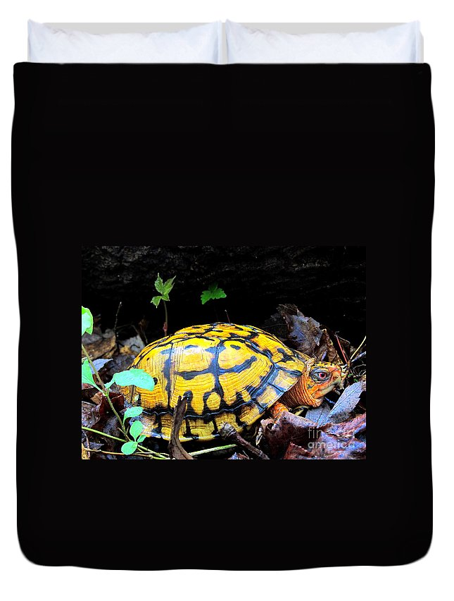 Yellow Box Turtle Duvet Cover featuring the photograph Chesapeake Box Turtle by Joshua Bales
