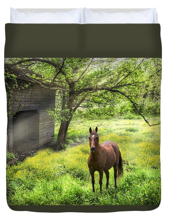 Appalachia Duvet Cover featuring the photograph Chestnut Horse In A Sunny Meadow by Debra and Dave Vanderlaan