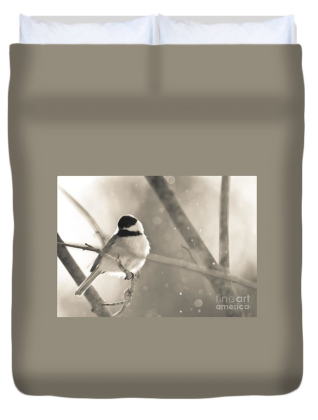 Landscapes Duvet Cover featuring the photograph Chickadee Sparkles by Cheryl Baxter