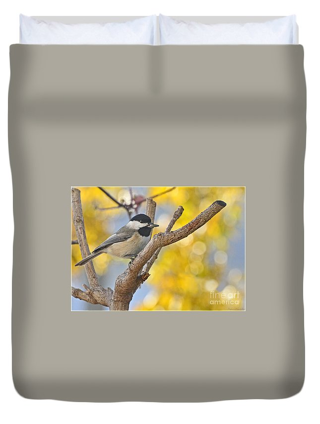 Animals Duvet Cover featuring the photograph Chickadee With His Prize by Debbie Portwood