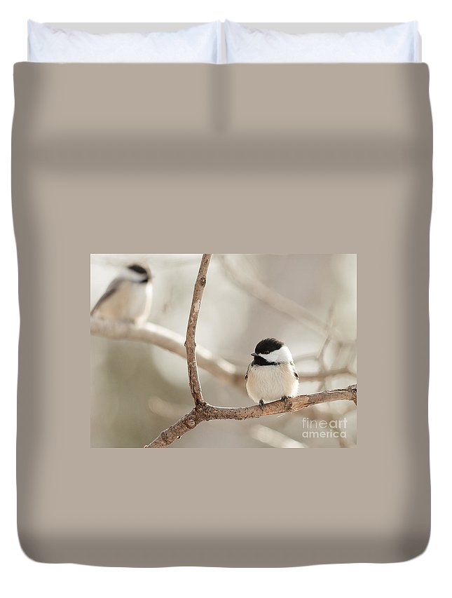 Landscapes Duvet Cover featuring the photograph Chickadees by Cheryl Baxter