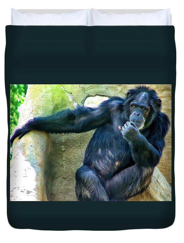 Primate Duvet Cover featuring the photograph Chimp 1 by Dawn Eshelman