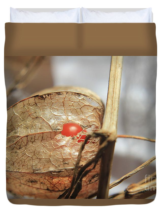 Plant Duvet Cover featuring the photograph Chinese Lantern Plant - E by Kenny Glotfelty