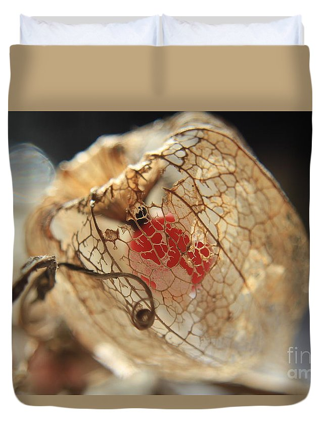 Plant Duvet Cover featuring the photograph Chinese Lantern Plant - H by Kenny Glotfelty