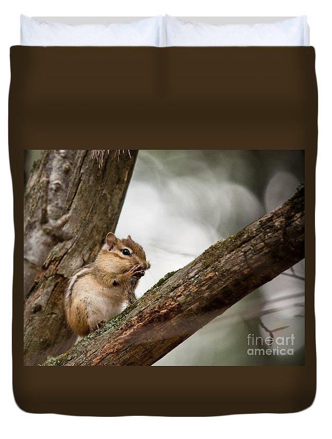 Duvet Cover featuring the photograph Chipmunk Bath by Cheryl Baxter