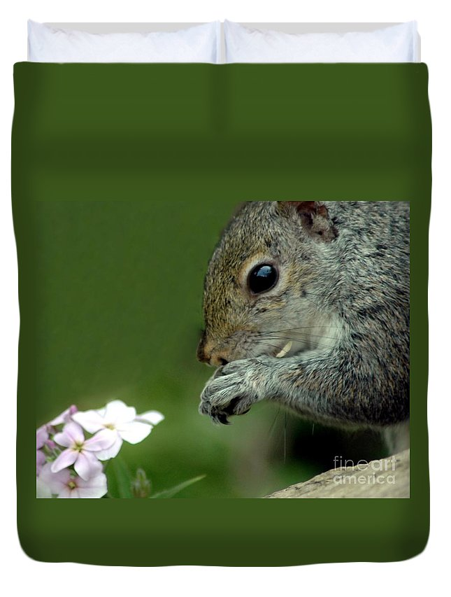 Chipmunk Duvet Cover featuring the photograph Chipmunk by Kathleen Struckle