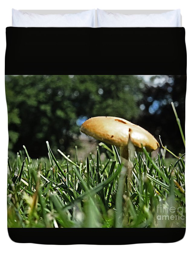 Landscape Duvet Cover featuring the photograph Chipmunks View Of A Mushroom by Dawn Gari