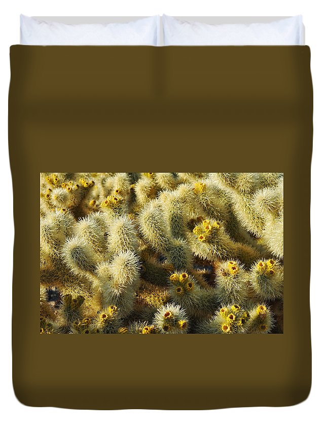 Joshua Tree National Park Duvet Cover featuring the photograph Cholla Cactus Garden Mirage by Kyle Hanson