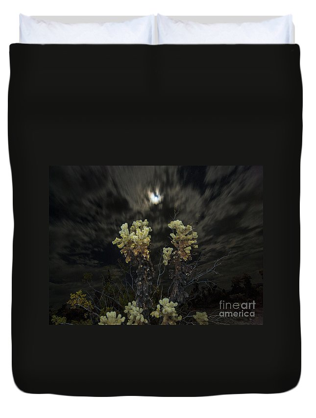 Cholla Cactus Duvet Cover featuring the photograph Cholla Light - Joshua Tree National Park by Jamie Pham