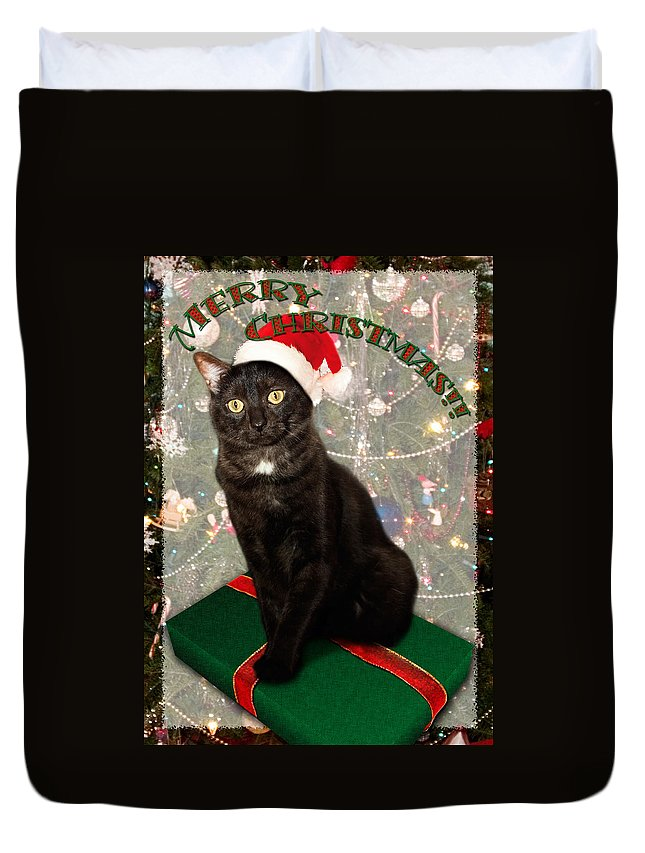 3scape Duvet Cover featuring the photograph Christmas Cat by Adam Romanowicz