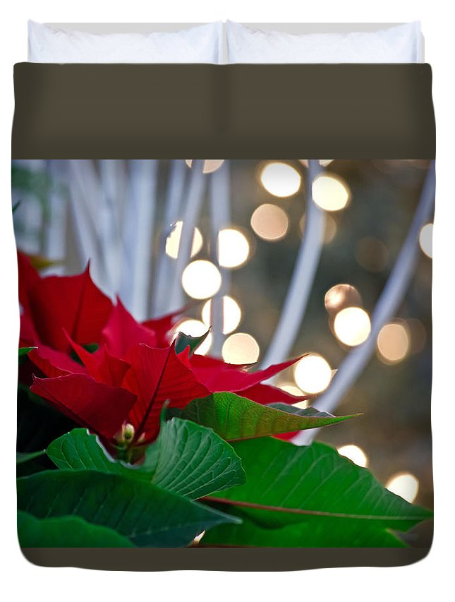 Christmas Poinsettia Flower Red Green Lights Plant Winter Holiday Duvet Cover featuring the photograph Christmas Poinsettia by Tracy Shrader