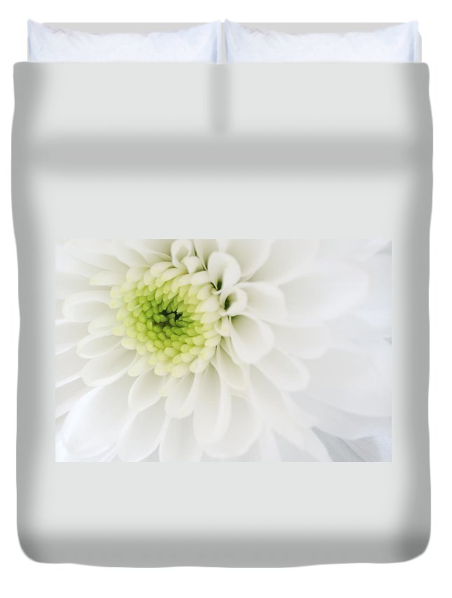 Chrysanthemum Duvet Cover featuring the photograph Chrysanthemum by Jeremy Voisey