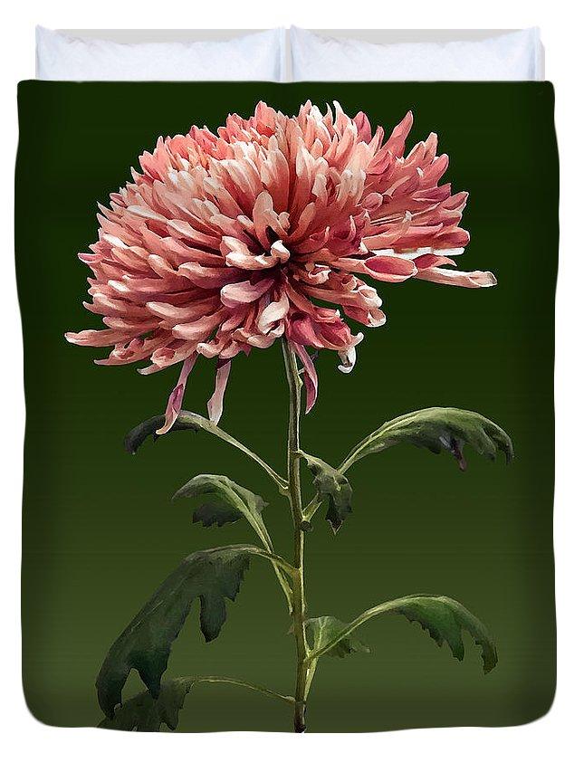 Chrysanthemum Duvet Cover featuring the photograph Chrysanthemum Shelbers by Susan Savad