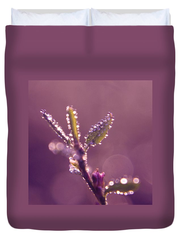 Mauve Duvet Cover featuring the photograph Circles From Nature - M01sqm by Variance Collections
