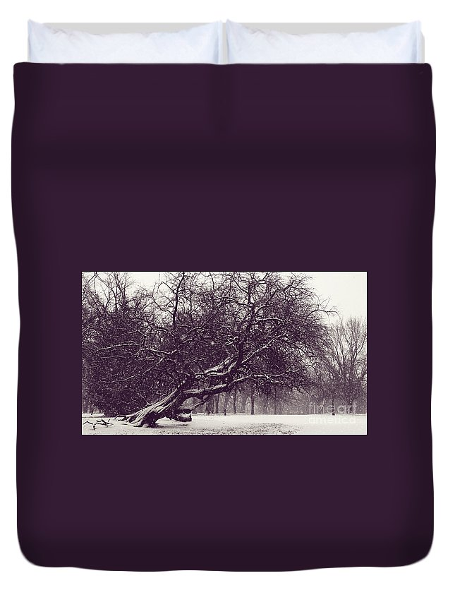 Tree Duvet Cover featuring the photograph City Park Icon by Pam Holdsworth
