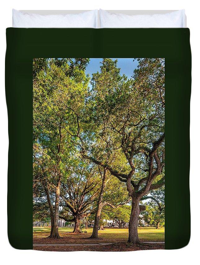 City Park Duvet Cover featuring the photograph City Park Oaks by Steve Harrington