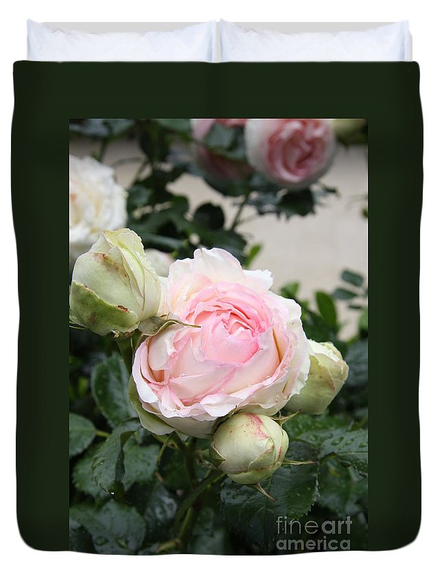 Roses Duvet Cover featuring the photograph Classic Rose by Christiane Schulze Art And Photography