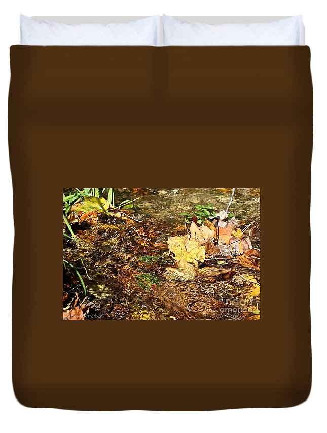 Flower Duvet Cover featuring the photograph Clean Stream by Susan Herber