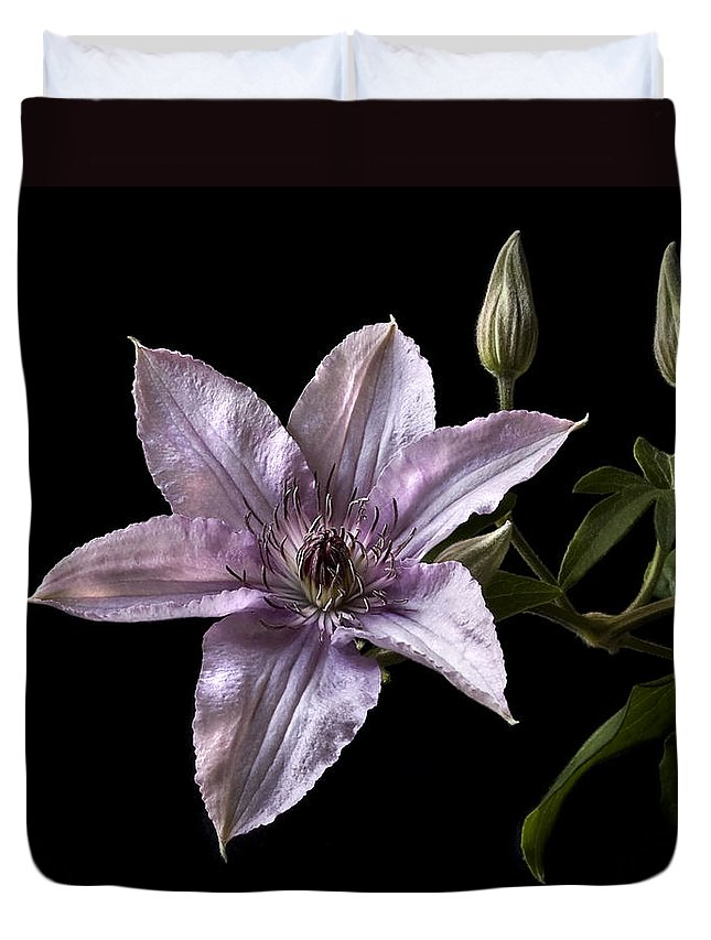 Flower Duvet Cover featuring the photograph Clematis by Endre Balogh