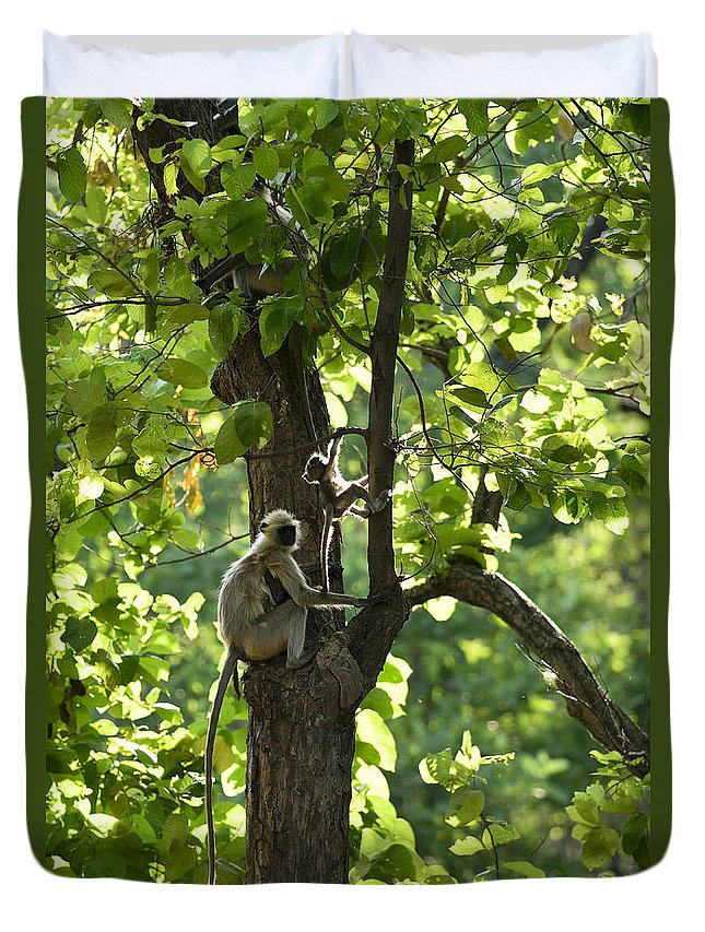 Langur Duvet Cover featuring the photograph Climbing Lessons by Fotosas Photography