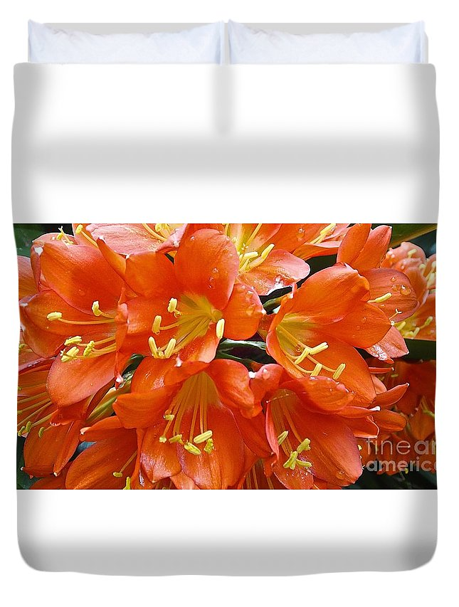 Flowers Duvet Cover featuring the photograph Music Please Clivia by Cheryl Cutler