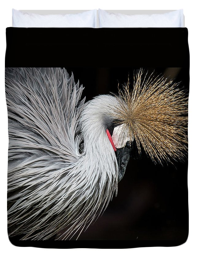 Tranquility Duvet Cover featuring the photograph Close Portrait Of A Grey Crowned Crane by © Santiago Urquijo
