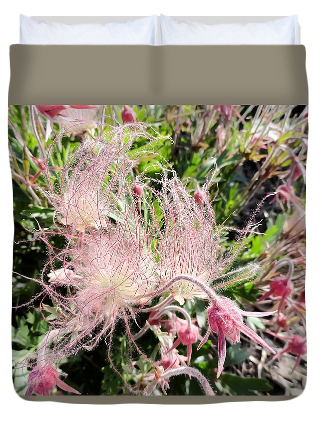 Close-up Of The Prairie Smoke Wildflower Duvet Cover featuring the photograph Close-up Of The Prairie Smoke Wildflower by Cynthia Woods