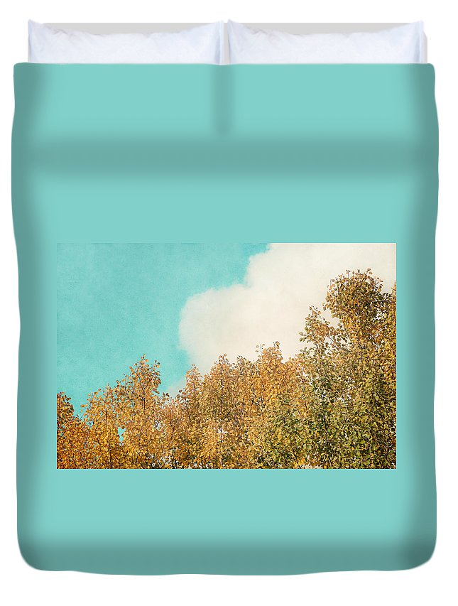 Birch Duvet Cover featuring the photograph Cloud And Birches by Ari Salmela