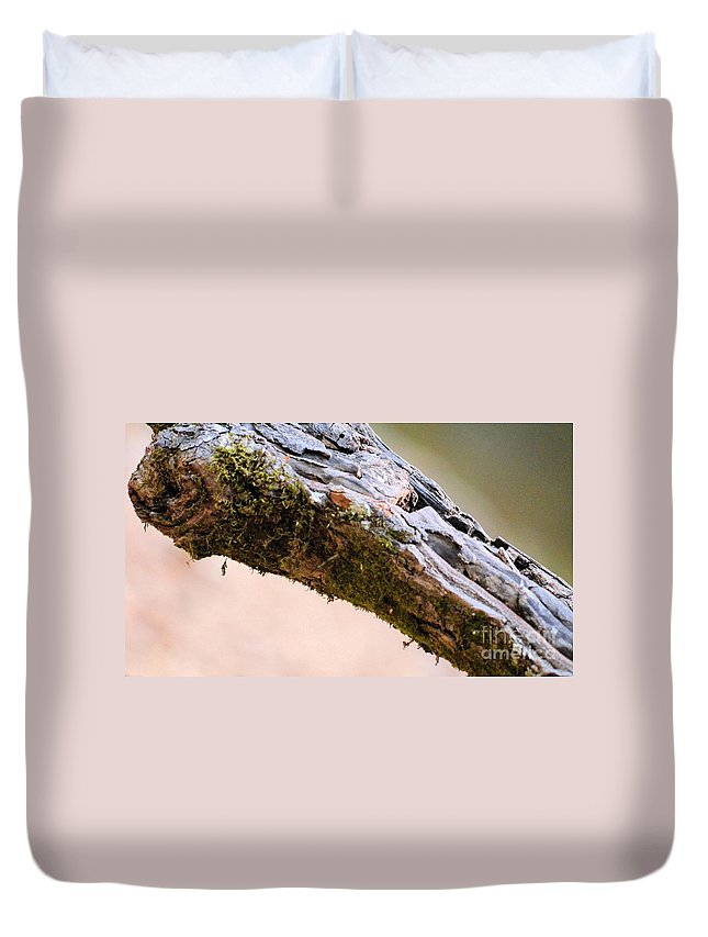 Club Of Moss Duvet Cover featuring the photograph Club Of Moss Abstract by Maria Urso