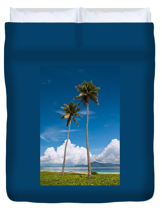 Coconut Duvet Cover featuring the photograph Coconut Trees by Kim Pin Tan