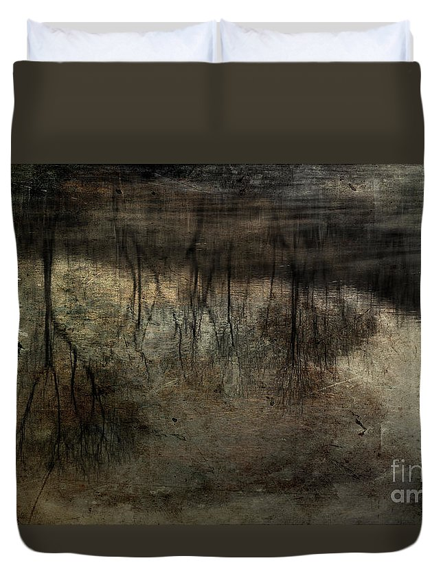 Fog On Water Duvet Cover featuring the photograph Cold Reflection 2 by Michael Eingle