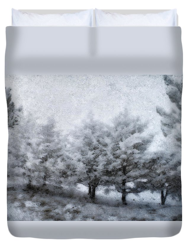 Weather Duvet Cover featuring the photograph Cold Spell by Ellen Heaverlo