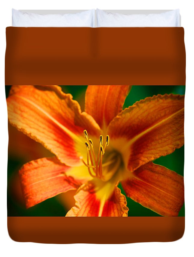 Orange Duvet Cover featuring the photograph Color Blast by Lorena Mahoney