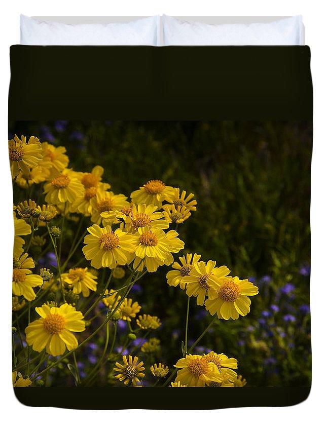 Yellow Brittlebush Duvet Cover featuring the photograph Color Me Yellow by Saija Lehtonen