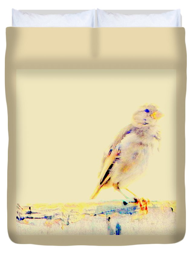 Color Duvet Cover featuring the photograph Color Sparrow by Kathy Barney