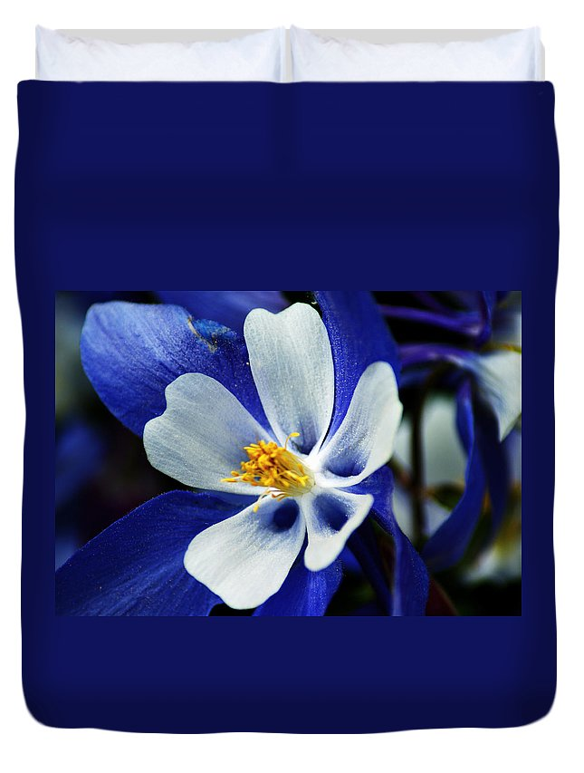 Columbine Duvet Cover featuring the photograph Colorado Columbine by Brian Kerls