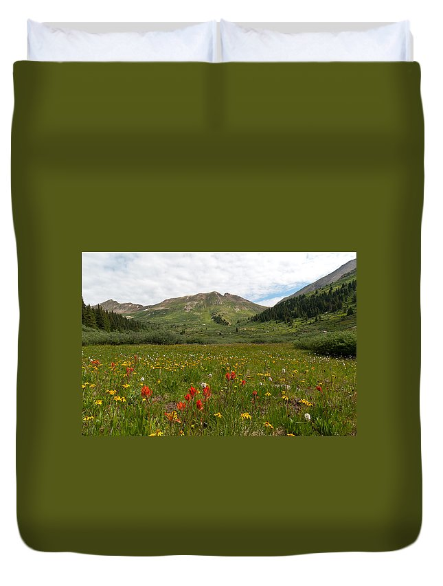 Mountain Duvet Cover featuring the photograph Colorado Meadow And Mountain Landscape by Cascade Colors