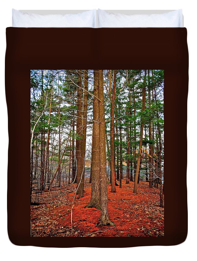 Forest Duvet Cover featuring the photograph Colorful Carolina Forest by Frozen in Time Fine Art Photography